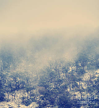 Tim Hester - Winter Mountains Vintage