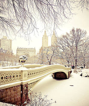 Winter - New York City - Central Park by Vivienne Gucwa