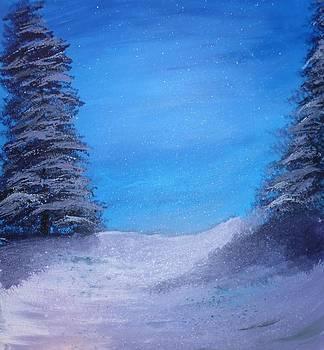 Winter Night by Dan Haley