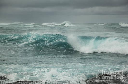 Charmian Vistaunet - Winter North Shore Wave