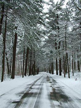 Winter on Mohegan Park Road by Geoffrey McLean