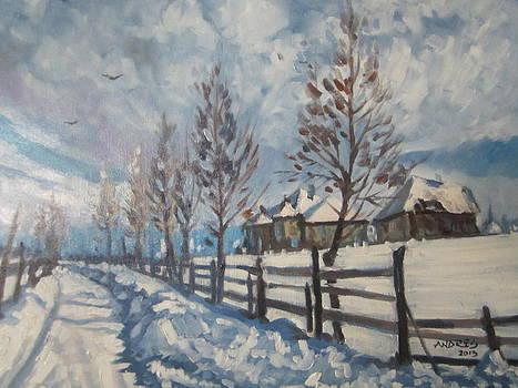 Winter Path by Andrei Attila Mezei