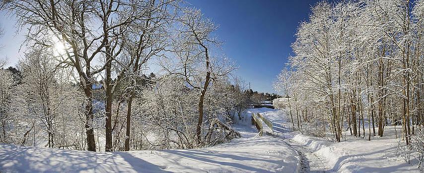 Winter path by Anna Grigorjeva