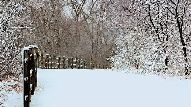 Rosanne Jordan - Winter Path in the Forest