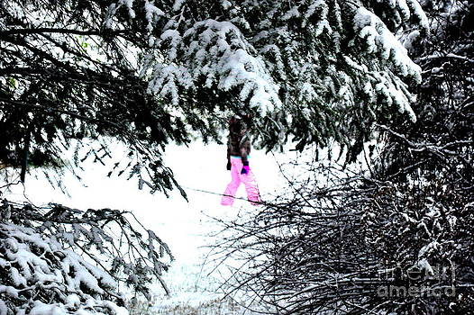 Winter Pink  2 by Tanya  Searcy