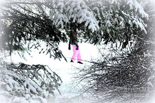 Winter Pink by Tanya  Searcy