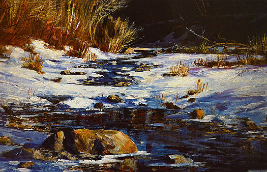 Winter Pond by Sandi OReilly