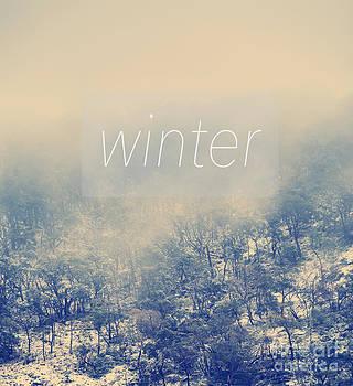 Tim Hester - Winter Poster