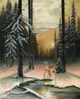 Winter Redwoods by Cecilia Brendel
