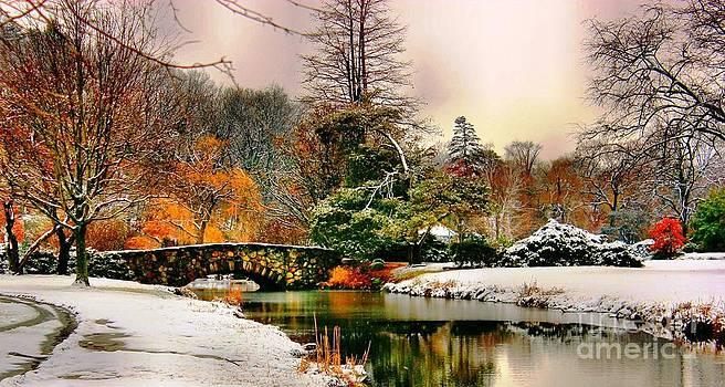 Winter Reflection by Judy Palkimas