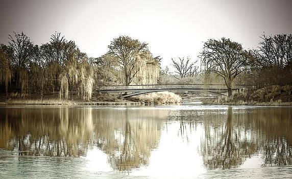 Julie Palencia - Winter Reflection Landscape