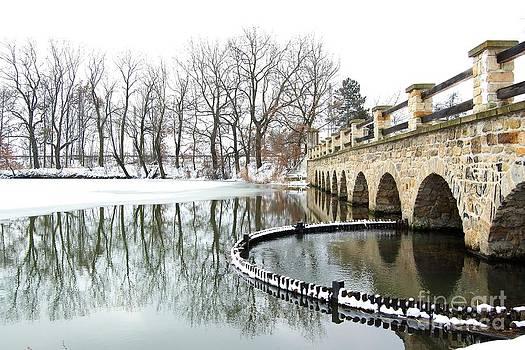 Winter Reflections by Katerina Vodrazkova