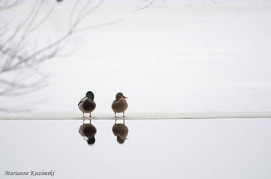 Marianne Kuzimski - Winter Reflections