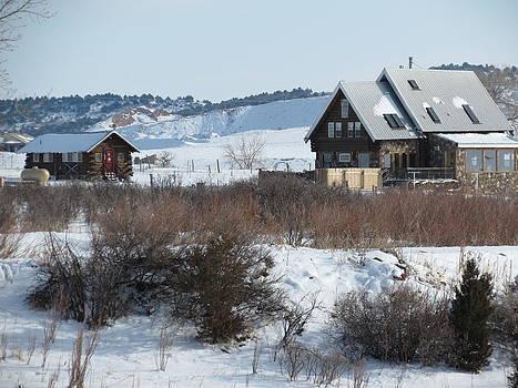 Winter Refuge by Karen Mary Castranova