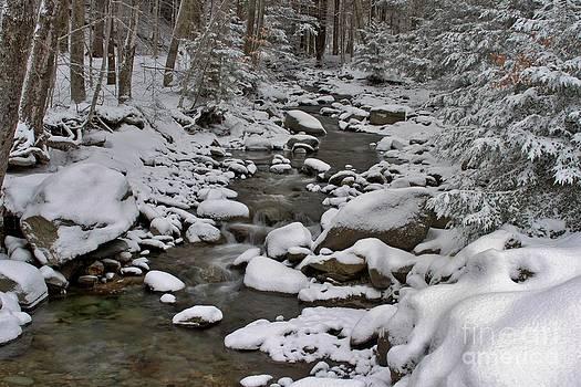 Butch Phillips - Winter River
