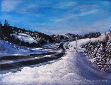 Winter Road by Bozena Zajaczkowska