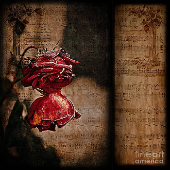 Liz  Alderdice - Winter Roses