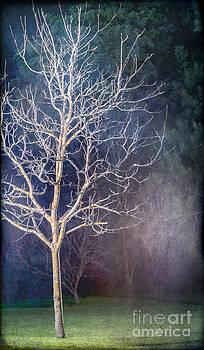 Russ Brown - Winter