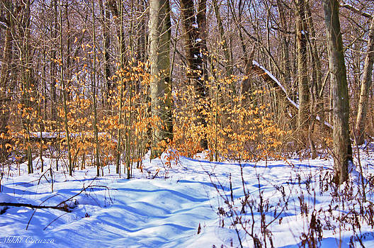 Winter Scene 2014 by Mikki Cucuzzo