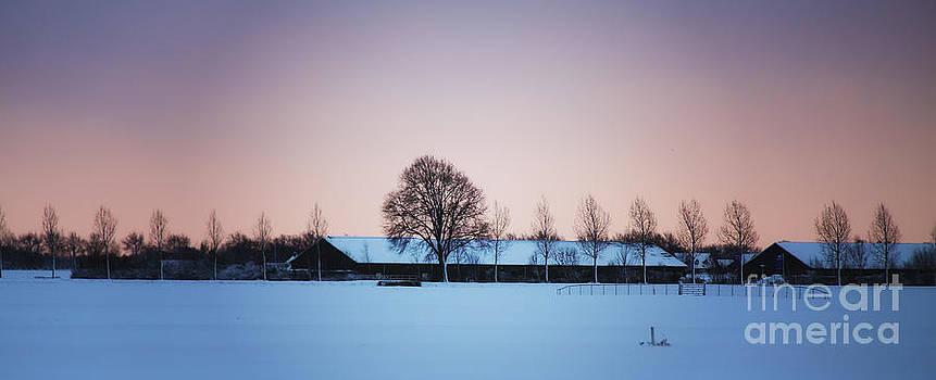 LHJB Photography - Winter scene