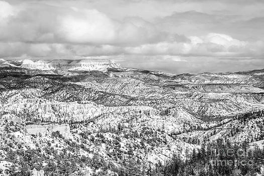 Winter scenery in Bryce Canyon Utah by Julia Hiebaum