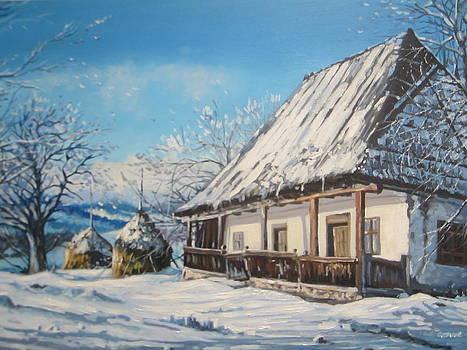 Winter Shine by Andrei Attila Mezei