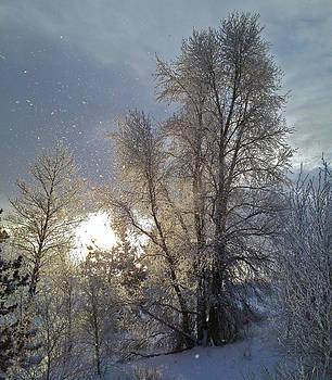Winter sky by Bob Berwyn