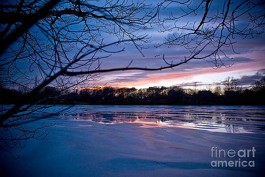 Winter Sky by Dolly Genannt