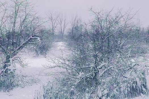 Winter smile by John Stuart Webbstock