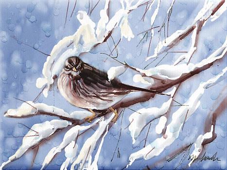 Winter Sparrow by Linda Minkowski