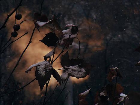 Winter spirit by Eremia Catalin