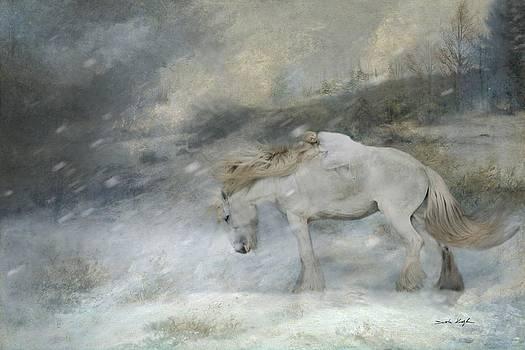 Winter Storm by Dorota Kudyba