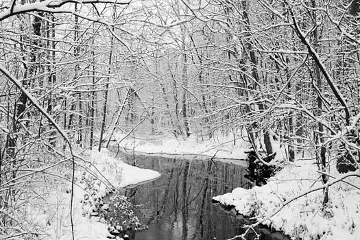 Winter Stream by David Yunker