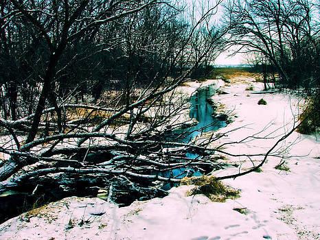 Winter stream by Slawek Sepko