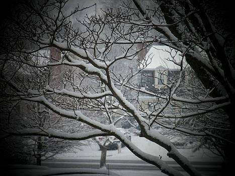 Winter Street by Joyce Kimble Smith