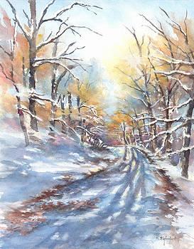 Winter Sun II by Kerry Kupferschmidt