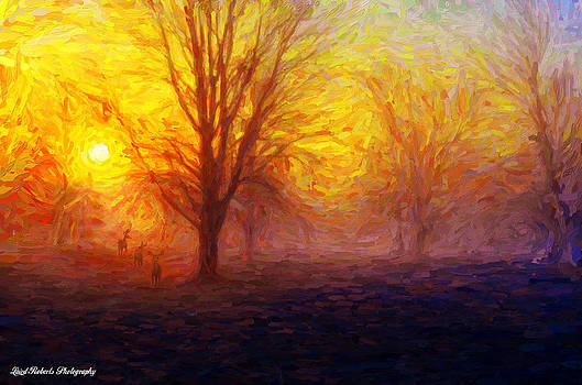 Winter Sunrise by Laird Roberts