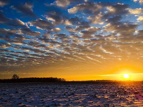 Winter sunset 1 by Dan McCafferty