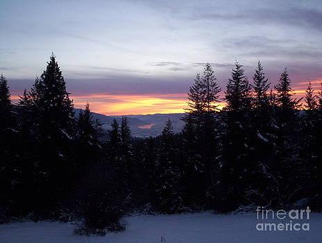 Winter Sunset by Doreen Lambert