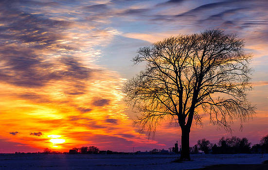 Winter Sunset by Jackie Novak