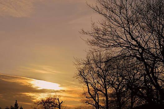 Bishopston Fine Art - Winter Sunset