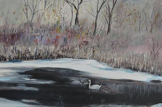 Winter Swan On River by Carolyn Speer