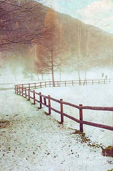 Silvia Ganora - Winter tree with fence