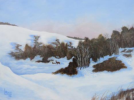 Winter Valley 1 by Linda Koch