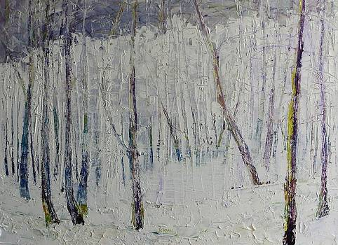 Winter White by Blanche Serban
