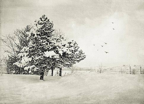 Julie Palencia - Winter White