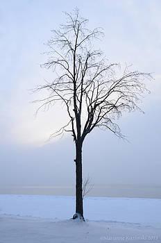 Marianne Kuzimski - Winter White