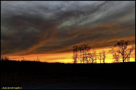 LeeAnn McLaneGoetz McLaneGoetzStudioLLCcom - Winter Wind storm