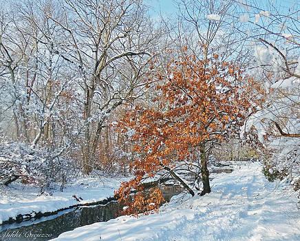 Winter Wonder Land by Mikki Cucuzzo