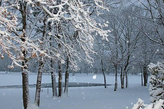 Paul SEQUENCE Ferguson             sequence dot net - Winter Wonder Land